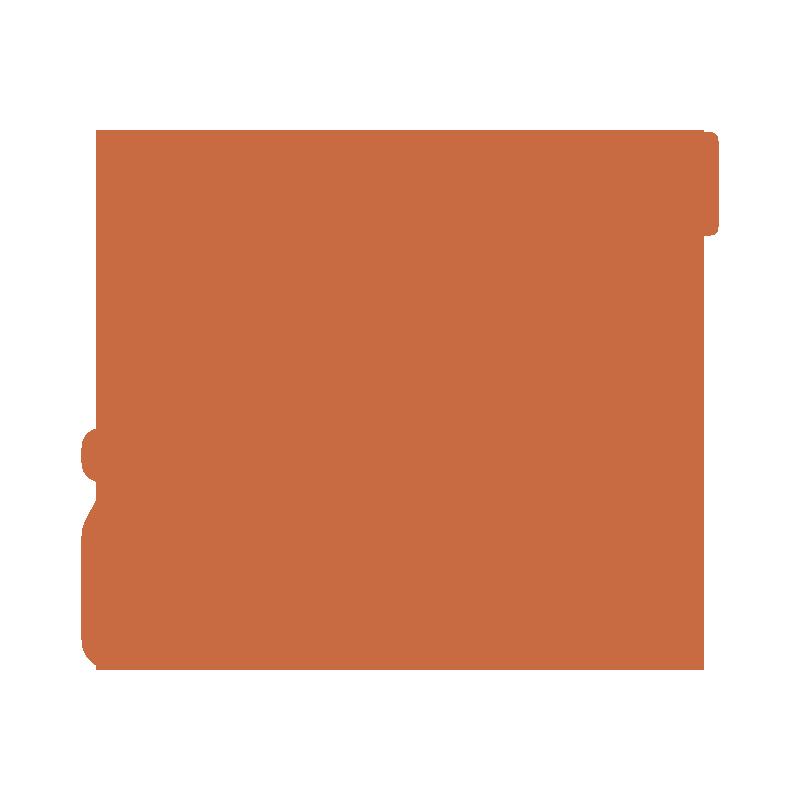 stucco-and-plaster-repair-icon-orange