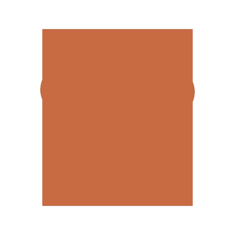 storm-damage-services-icon-orange